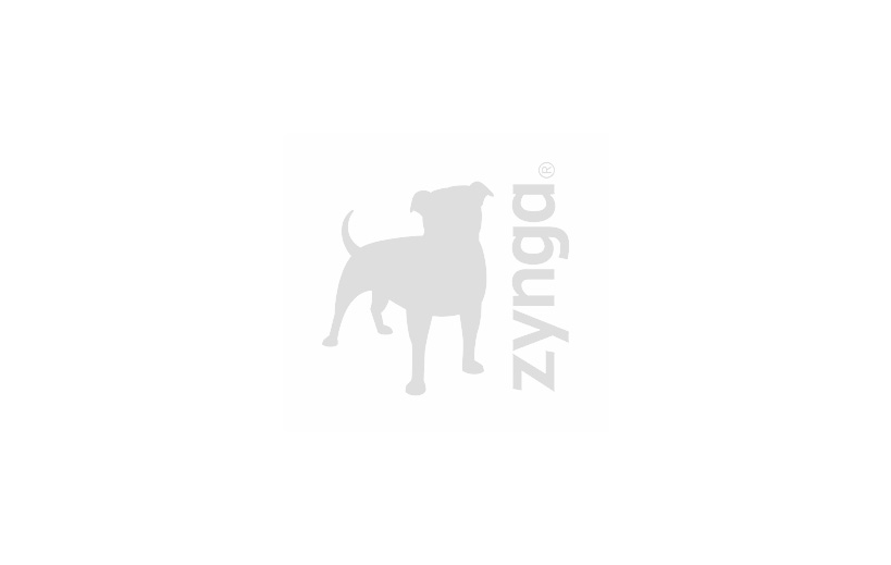 Zynga Leadership Thumbnail